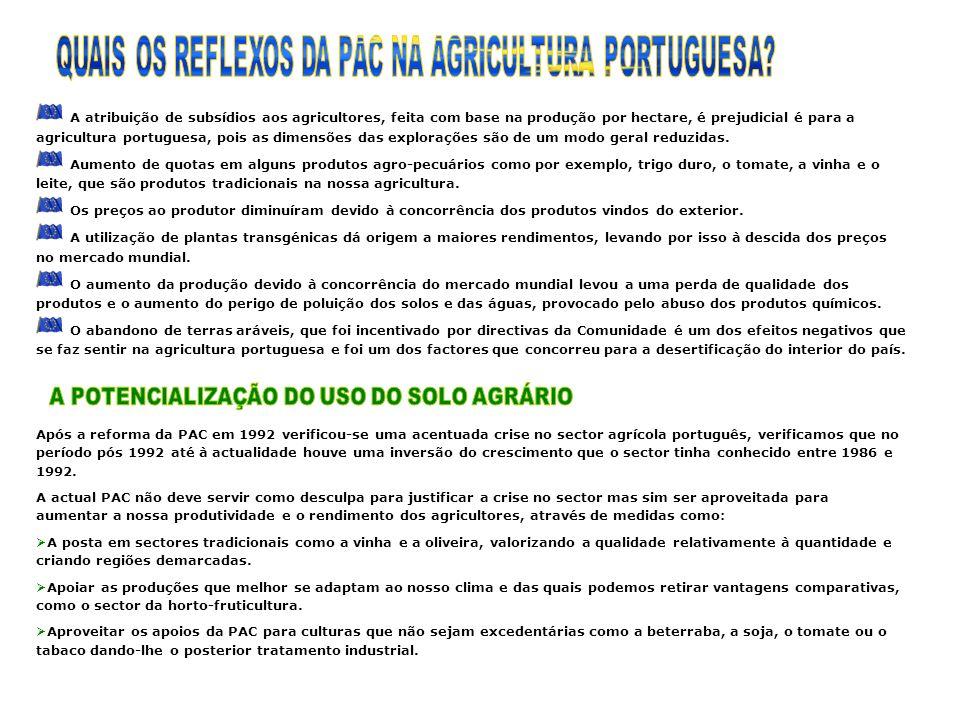 A atribuição de subsídios aos agricultores, feita com base na produção por hectare, é prejudicial é para a agricultura portuguesa, pois as dimensões das explorações são de um modo geral reduzidas.
