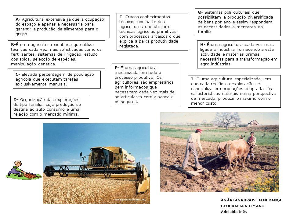 AS ÁREAS RURAIS EM MUDANÇA GEOGRAFIA A 11º ANO Adelaide Inês AS PRINCIPAIS PRODUÇÕES AGRÍCOLAS EM PORTUGAL A evolução recente da produção agrícola em Portugal resultou da adesão de nosso país à União Europeia e da integração da nossa agricultura na PAC, foram os mecanismos desta, os fundos enviados e a sua aplicação, que alteraram o panorama do sector agrícola.