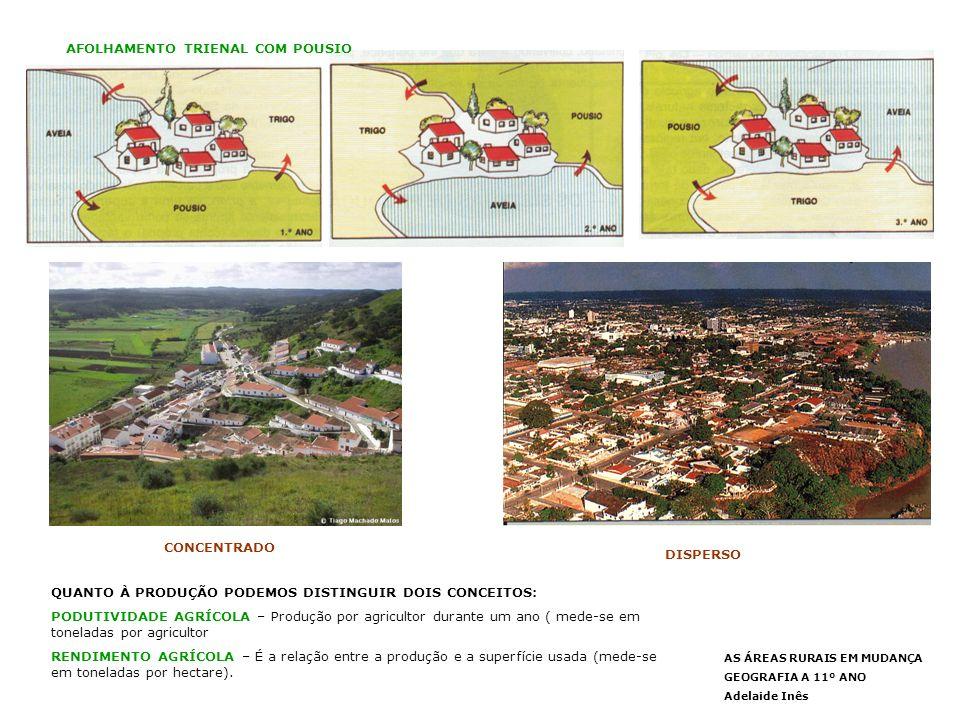 O IMPACTO DA PAC NA AGRICULTURA PORTUGUESA Portugal aderiu à Comunidade em 1986.