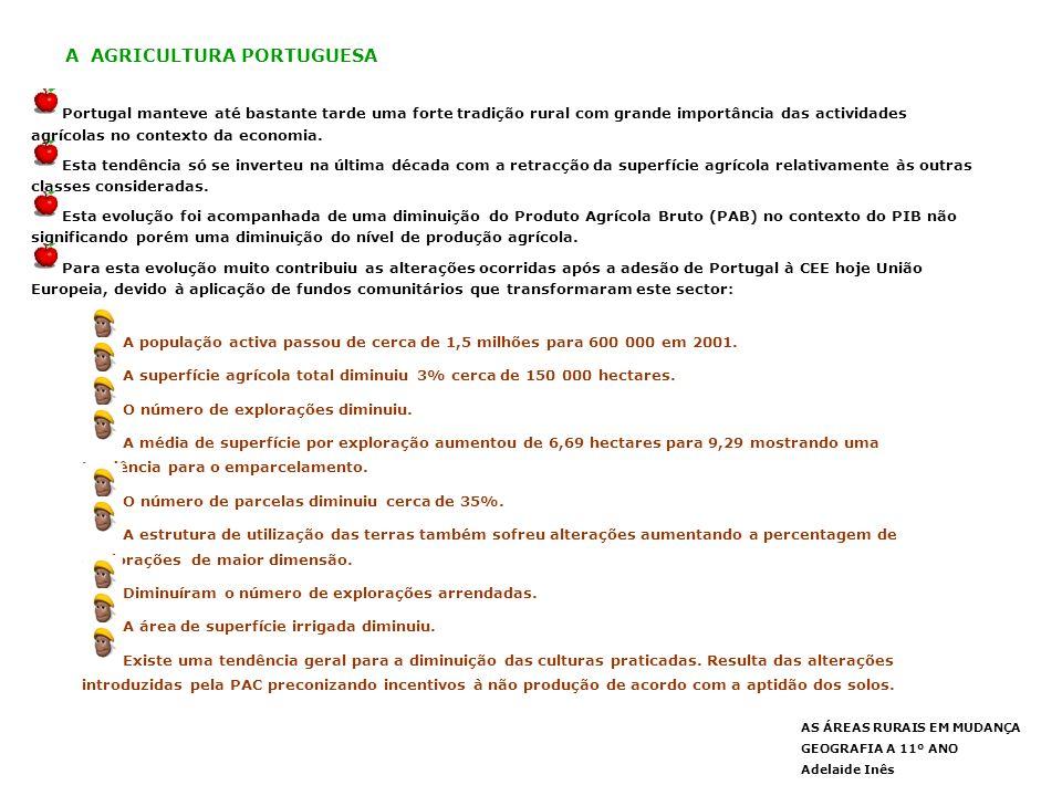 AS ÁREAS RURAIS EM MUDANÇA GEOGRAFIA A 11º ANO Adelaide Inês A AGRICULTURA PORTUGUESA Portugal manteve até bastante tarde uma forte tradição rural com grande importância das actividades agrícolas no contexto da economia.