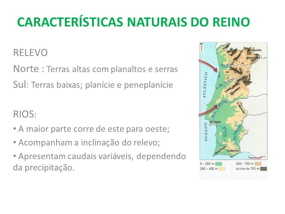 CARACTERÍSTICAS NATURAIS DO REINO RELEVO Norte : Terras altas com planaltos e serras Sul : Terras baixas; planície e peneplanície RIOS : A maior parte