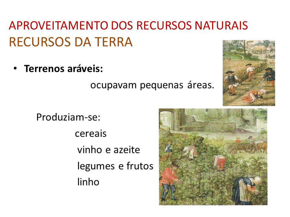 APROVEITAMENTO DOS RECURSOS NATURAIS RECURSOS DA TERRA Terrenos aráveis: ocupavam pequenas áreas. Produziam-se: cereais vinho e azeite legumes e fruto