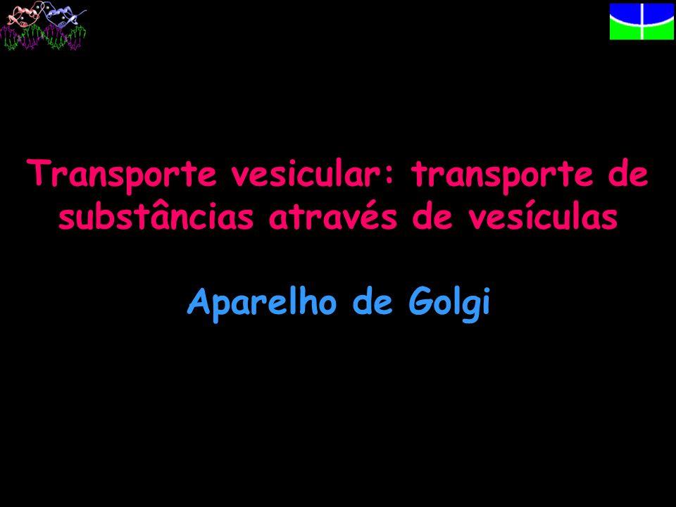 Transporte vesicular: transporte de substâncias através de vesículas Aparelho de Golgi