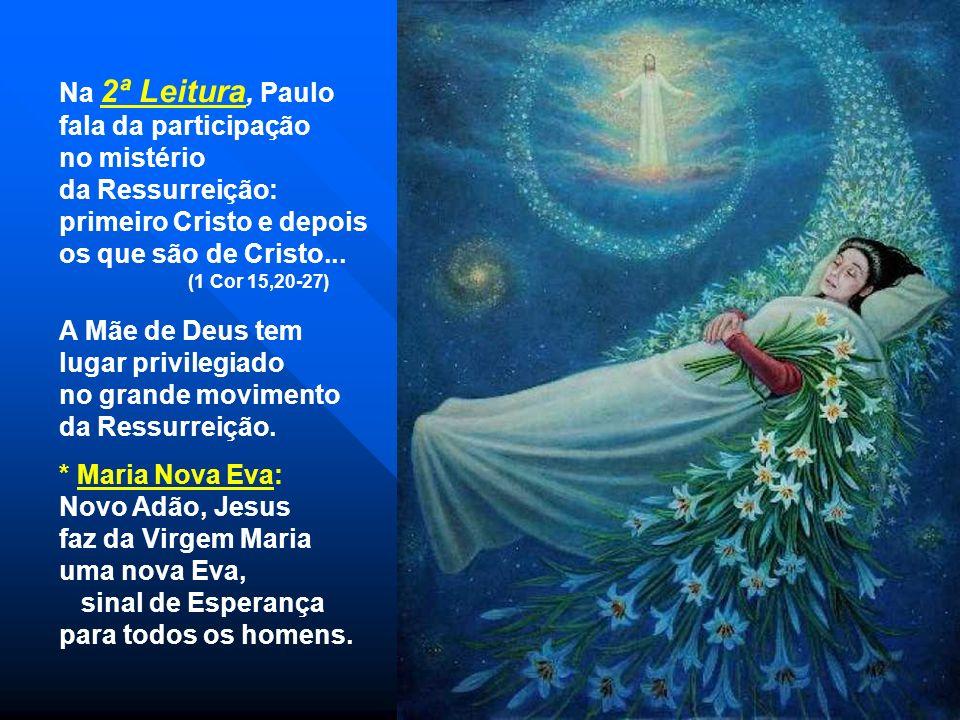 A 1ª Leitura fala de um grande SINAL. (Ap 11,19a;12,1-6a.10a) Uma mulher apareceu no céu vestida de sol e coroada de 12 estrelas. Apesar de perseguida