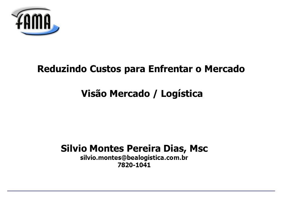 Reduzindo Custos para Enfrentar o Mercado Visão Mercado / Logística Silvio Montes Pereira Dias, Msc silvio.montes@bealogistica.com.br 7820-1041