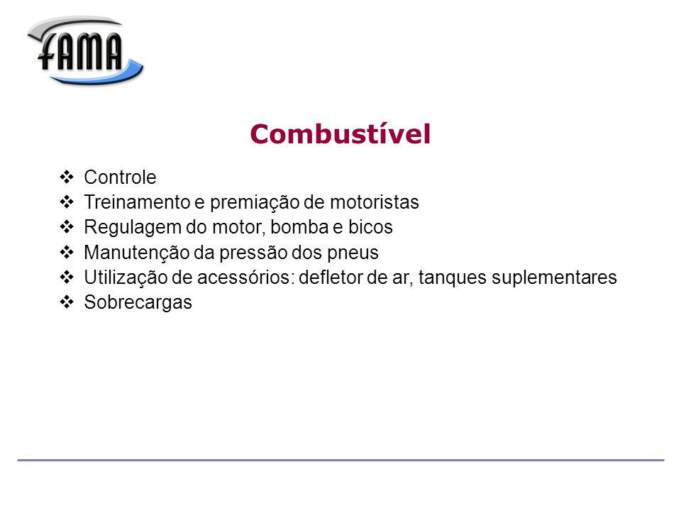 Combustível Controle Treinamento e premiação de motoristas Regulagem do motor, bomba e bicos Manutenção da pressão dos pneus Utilização de acessórios: defletor de ar, tanques suplementares Sobrecargas