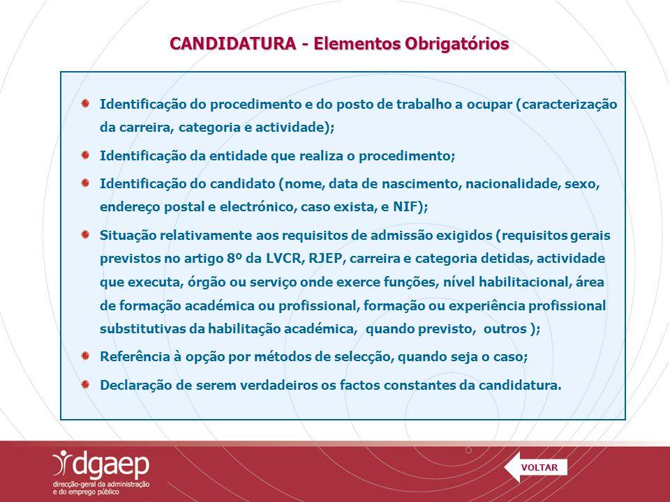 Identificação do procedimento e do posto de trabalho a ocupar (caracterização da carreira, categoria e actividade); Identificação da entidade que real