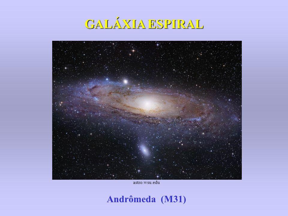 Galáxia Espiral Barrada NGC 1300 apod.nasa.gov