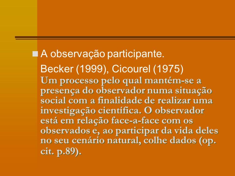 Um processo pelo qual mantém-se a presença do observador numa situação social com a finalidade de realizar uma investigação científica.