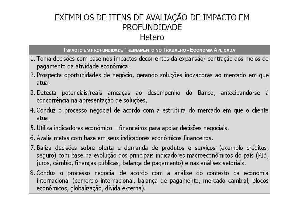 EXEMPLOS DE ITENS DE AVALIAÇÃO DE IMPACTO EM PROFUNDIDADE Hetero