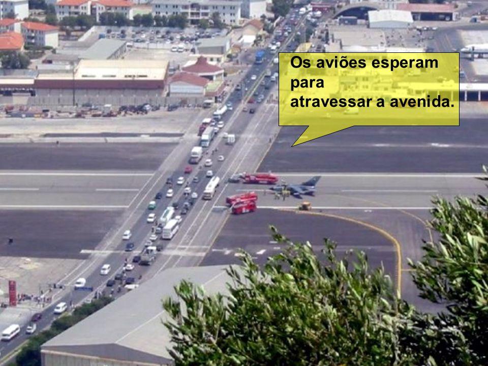 Esta é a avenida que atravessa o aeroporto,e é importante via de ligação ao centro da cidade. É comum o semáforo ficar vermelho e os carros pararem pa