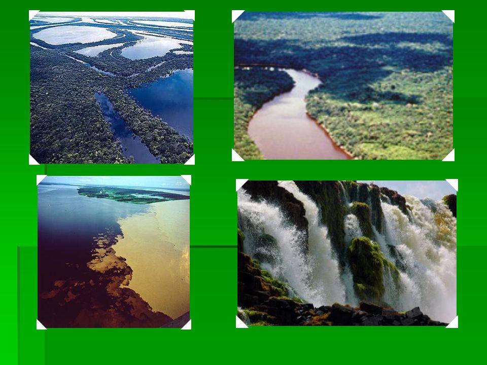 2000 Parque Nacional do Jaú - É o maior parque nacional na bacia amazônica, uma das regiões mais ricas do mundo em biodiversidade. Estabelecida em 198