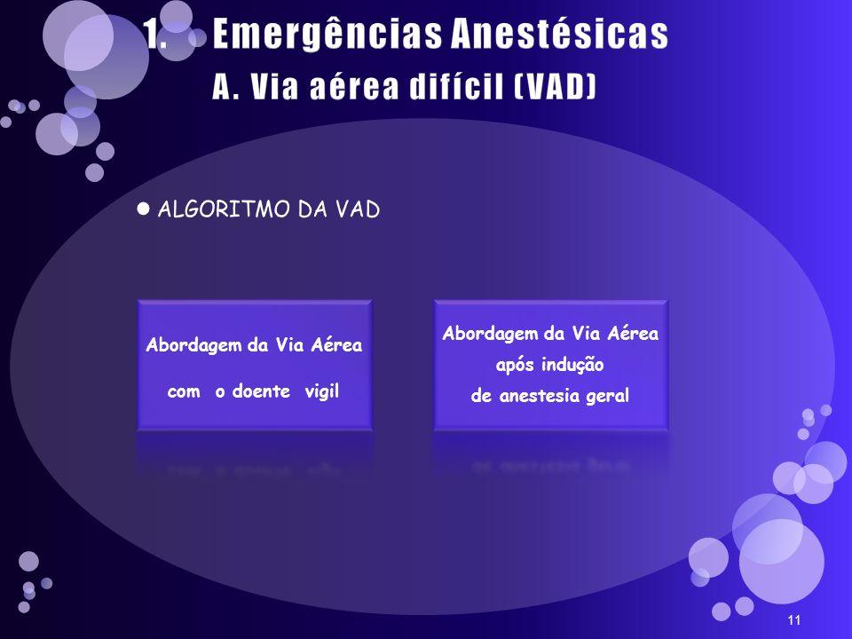 11 Abordagem da Via Aérea com o doente vigil Abordagem da Via Aérea após indução de anestesia geral