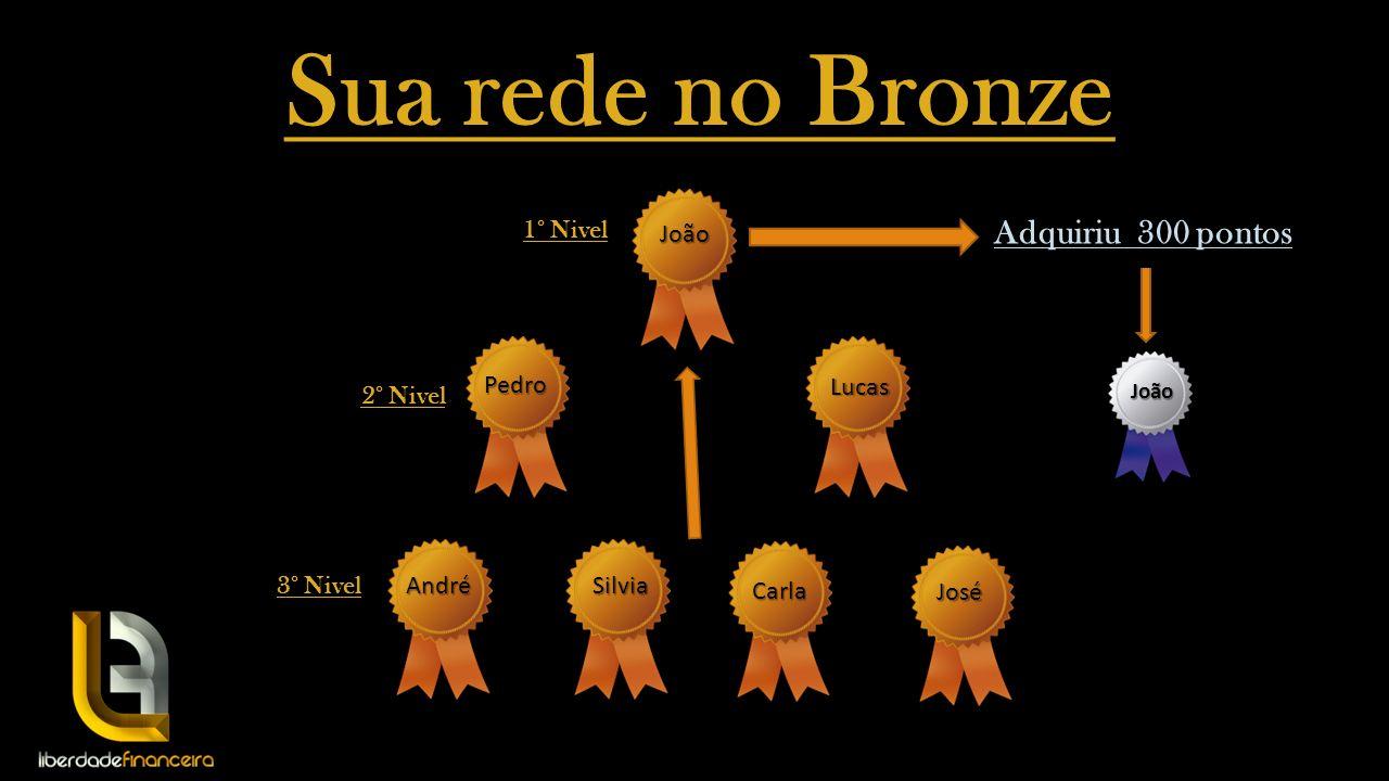 Sua rede no Bronze Adquiriu 300 pontos 1° Nivel 2° Nivel 3° Nivel João Pedro Lucas AndréSilvia Carla José João