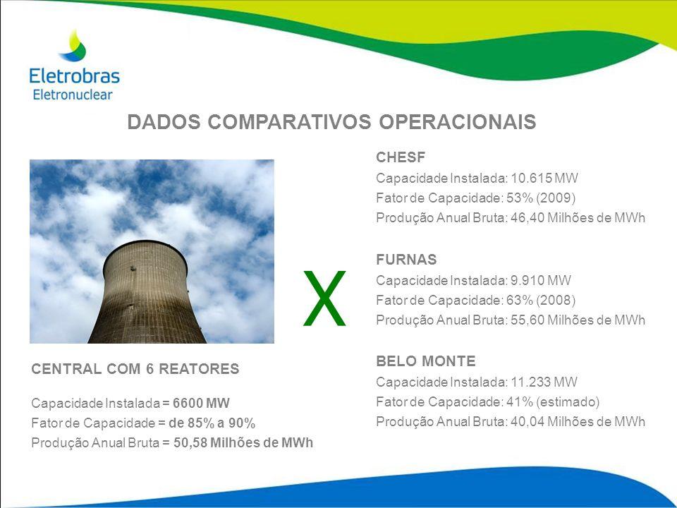 CHESF Capacidade Instalada: 10.615 MW Fator de Capacidade: 53% (2009) Produção Anual Bruta: 46,40 Milhões de MWh FURNAS Capacidade Instalada: 9.910 MW