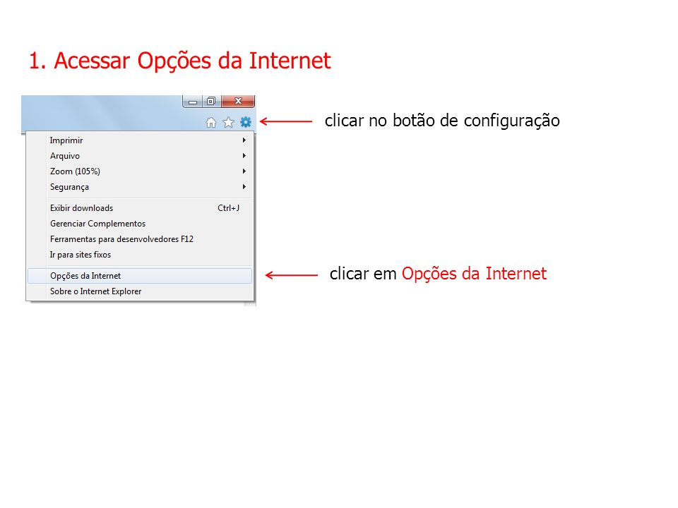 2. Acessar Configurações da LAN selecionar a aba Conexões clicar em Configurações da LAN