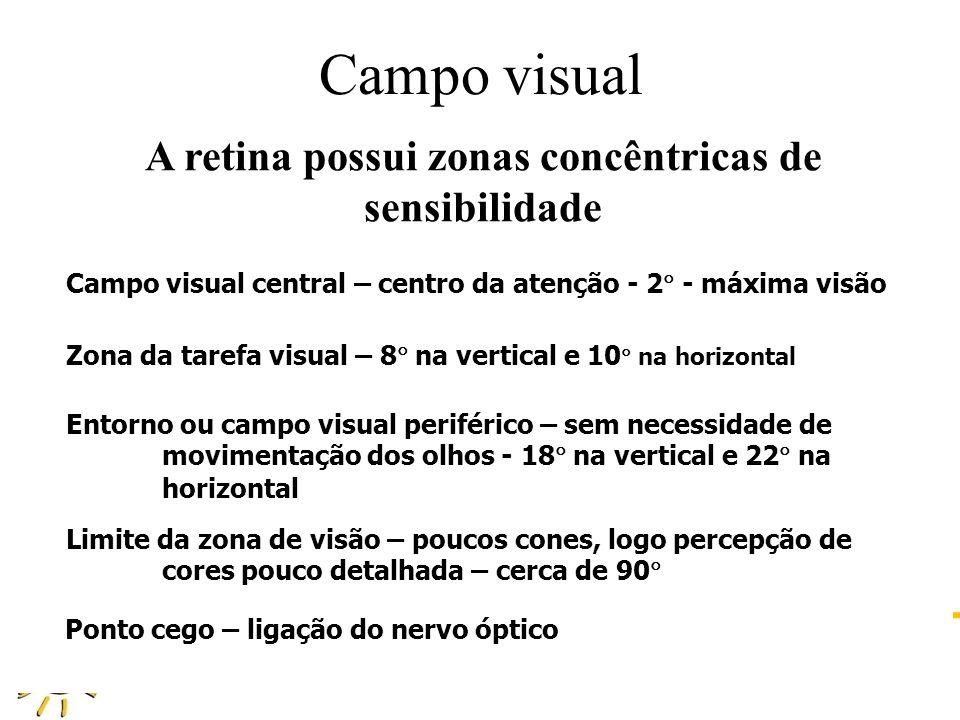 DAU 808 ILUMINAÇÃO NATURAL NO AMBIENTE CONSTRUÍDO PROFA GIANE DE CAMPOS GRIGOLETTI Campo visual A retina possui zonas concêntricas de sensibilidade Ca