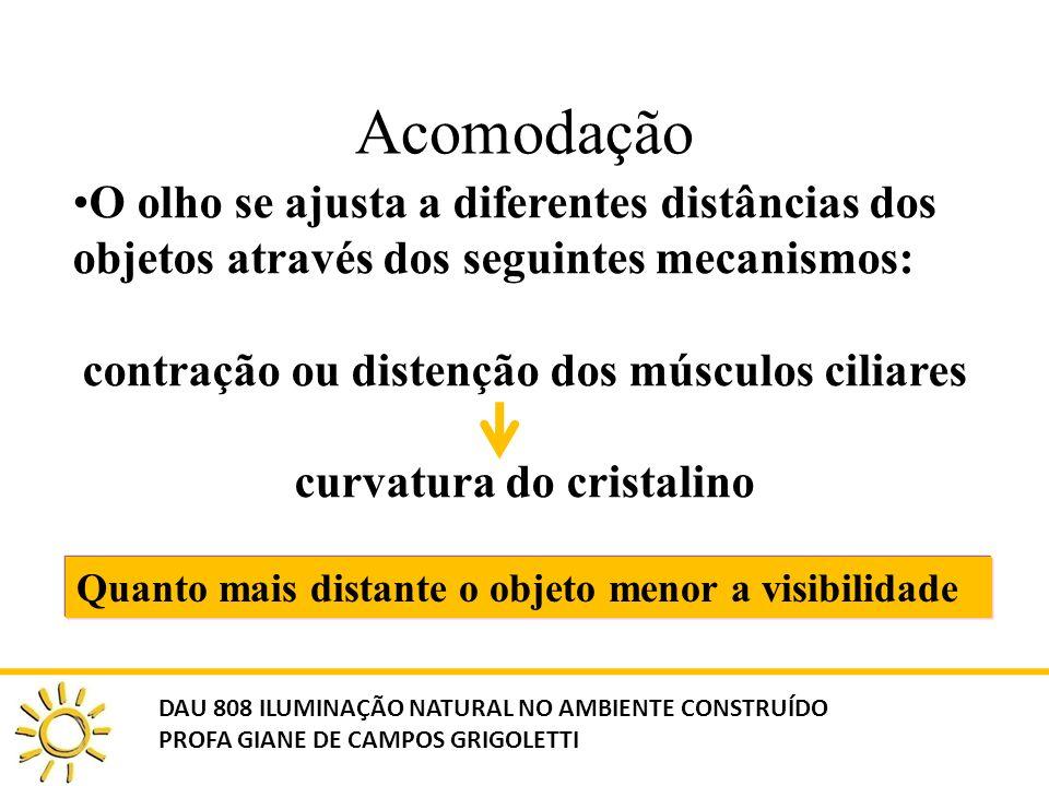 Acomodação O olho se ajusta a diferentes distâncias dos objetos através dos seguintes mecanismos: contração ou distenção dos músculos ciliares curvatu