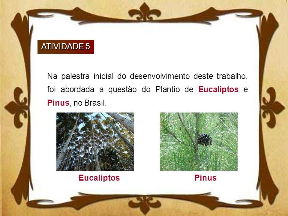 ATIVIDADE 5 Na palestra inicial do desenvolvimento deste trabalho, foi abordada a questão do Plantio de Eucaliptos e Pinus, no Brasil. EucaliptosPinus