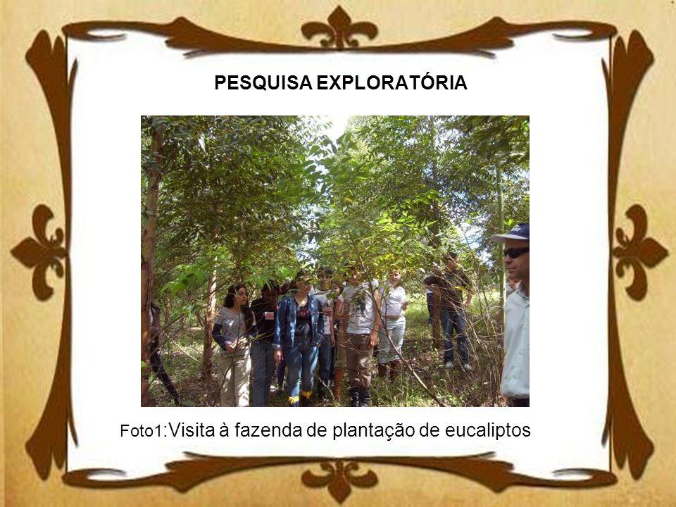 PESQUISA EXPLORATÓRIA Foto1 :Visita à fazenda de plantação de eucaliptos