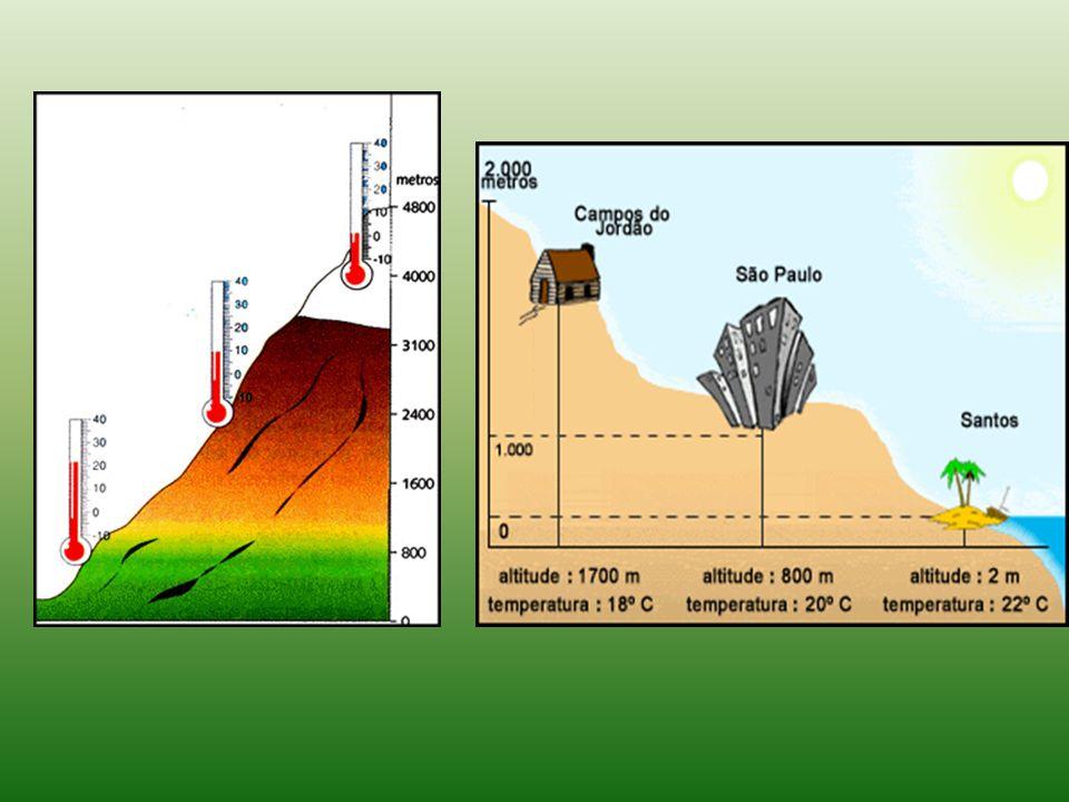 VEGETAÇÃO DE ALTITUDE A vegetação dos climas de altitude, independentemente da região do Mundo, vai rareando conforme a altitude vai aumentando, de modo que em locais de neves perpétuas , não se encontram praticamente nenhum ser vivo (tal como nas latitudes muito elevadas - perto dos 90 0 ).