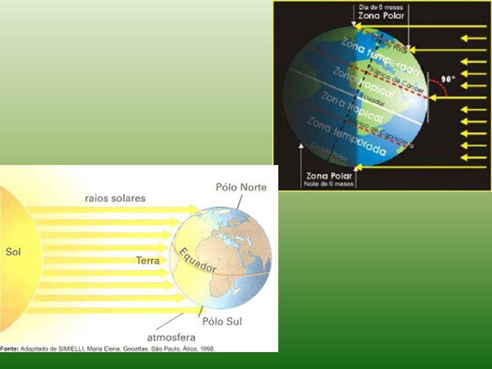 Formações Desérticas Localizada em regiões semi-áridas (algumas espécies) e áridas.