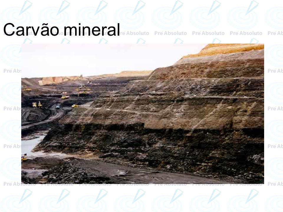 A formação do carvão mineral teve início no Período Carbonífero, na era Paleozóica, quando imensas florestas de ambientes que apresentavam decomposição sem oxigênio (anaeróbicos) - como pântanos, deltas e estuários de rios e alguns lagos, principalmente no que hoje corresponde ao hemisfério norte -, foram soterradas em camadas horizontais (por isso as reservas de carvão são, geralmente, veios horizontais de grande extensão).era Paleozóica