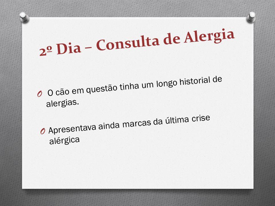 2º Dia – Consulta de Alergia O O cão em questão tinha um longo historial de alergias. O Apresentava ainda marcas da última crise alérgica