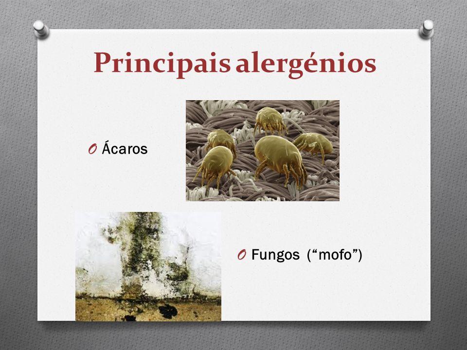 Principais alergénios O Fungos (mofo) O Ácaros