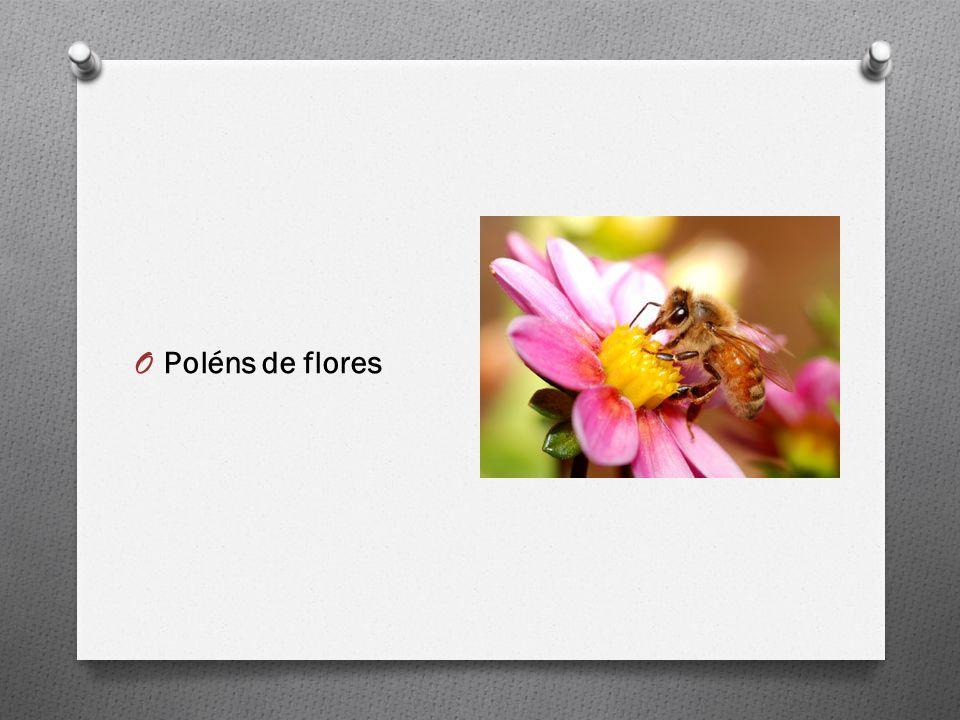 O Poléns de flores