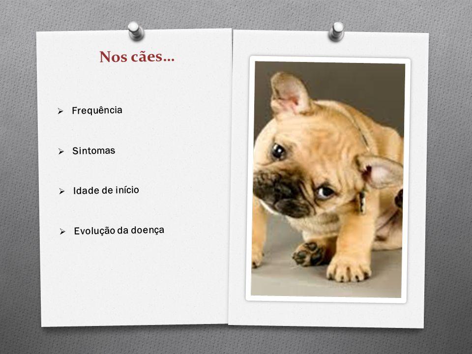 Nos cães… Frequência Sintomas Idade de início Evolução da doença