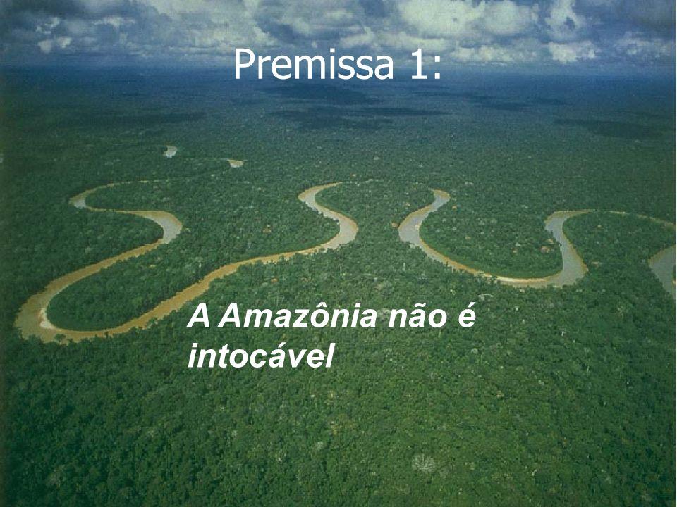 Premissa 1: A Amazônia não é intocável