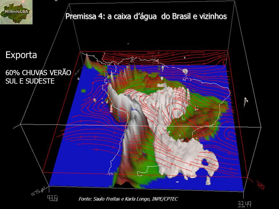 Premissa 4: a caixa dágua do Brasil e vizinhos Fonte: Saulo Freitas e Karla Longo, INPE/CPTEC Exporta 60% CHUVAS VERÃO SUL E SUDESTE