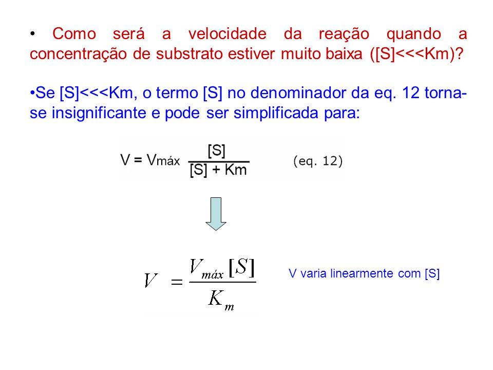Como será a velocidade da reação quando a concentração de substrato estiver muito baixa ([S]<<<Km)? Se [S]<<<Km, o termo [S] no denominador da eq. 12