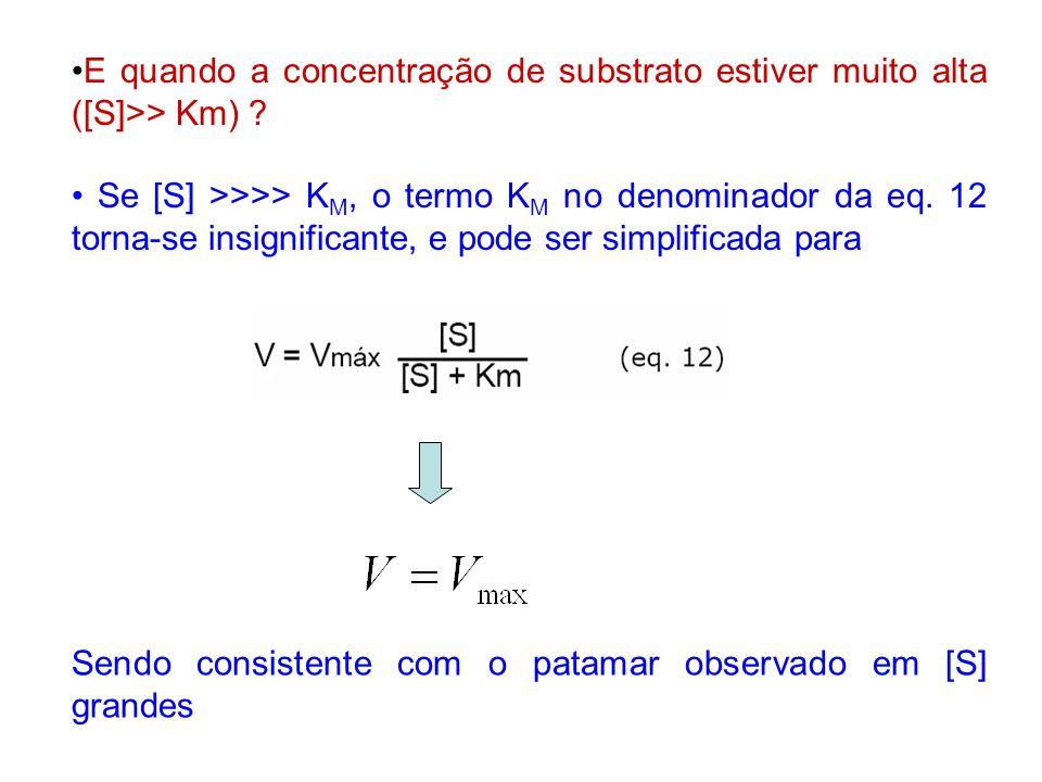 E quando a concentração de substrato estiver muito alta ([S]>> Km) ? Se [S] >>>> K M, o termo K M no denominador da eq. 12 torna-se insignificante, e