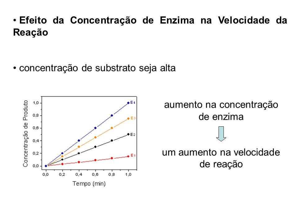 Efeito da Concentração de Enzima na Velocidade da Reação concentração de substrato seja alta aumento na concentração de enzima um aumento na velocidad