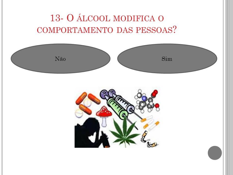 13- O ÁLCOOL MODIFICA O COMPORTAMENTO DAS PESSOAS ? NãoSim
