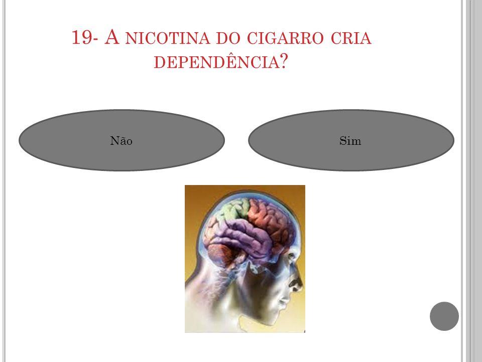 19- A NICOTINA DO CIGARRO CRIA DEPENDÊNCIA ? NãoSim