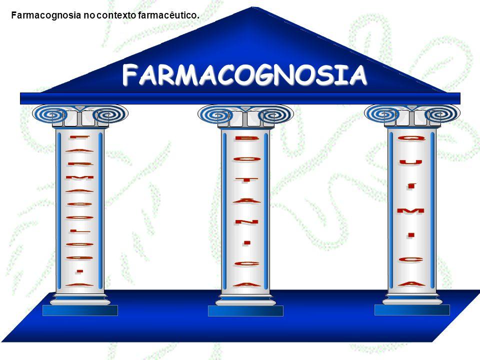 Etnofarmacologia Química Farmacologia Toxicologia Farmacotécnica Clínica Botânica Agronomia Farmacognosia Farmacognosia no contexto farmacêutico.