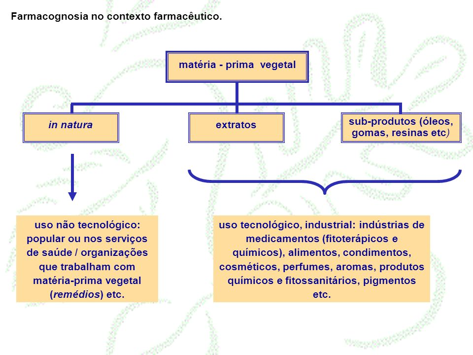 matéria - prima vegetal in naturaextratos sub-produtos (óleos, gomas, resinas etc) uso não tecnológico: popular ou nos serviços de saúde / organizaçõe