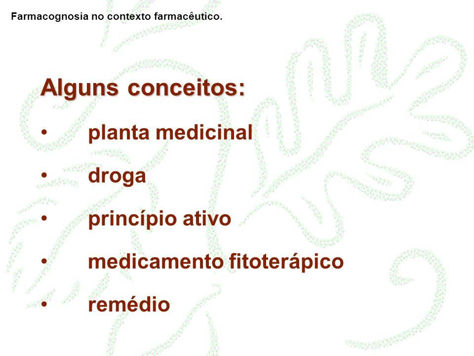 remédio artesanal/caseiro Formas farmacêuticas: Farmacognosia no contexto farmacêutico.