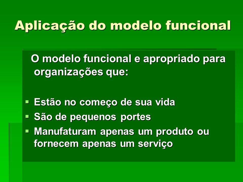 Aplicação do modelo funcional O modelo funcional e apropriado para organizações que: O modelo funcional e apropriado para organizações que: Estão no c
