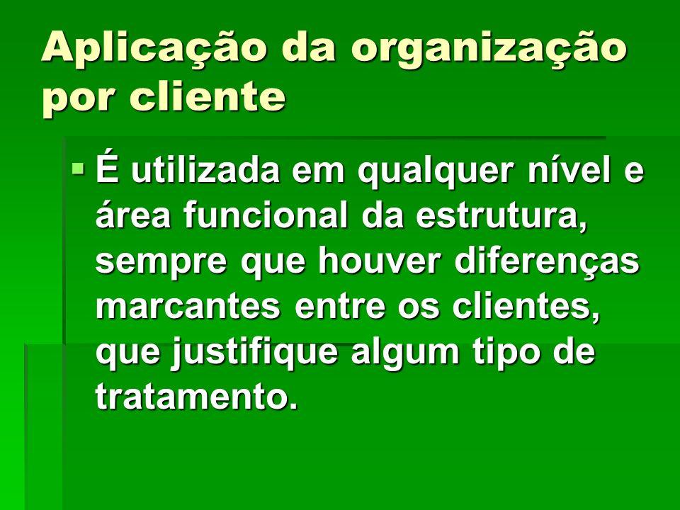 Aplicação da organização por cliente É utilizada em qualquer nível e área funcional da estrutura, sempre que houver diferenças marcantes entre os clie