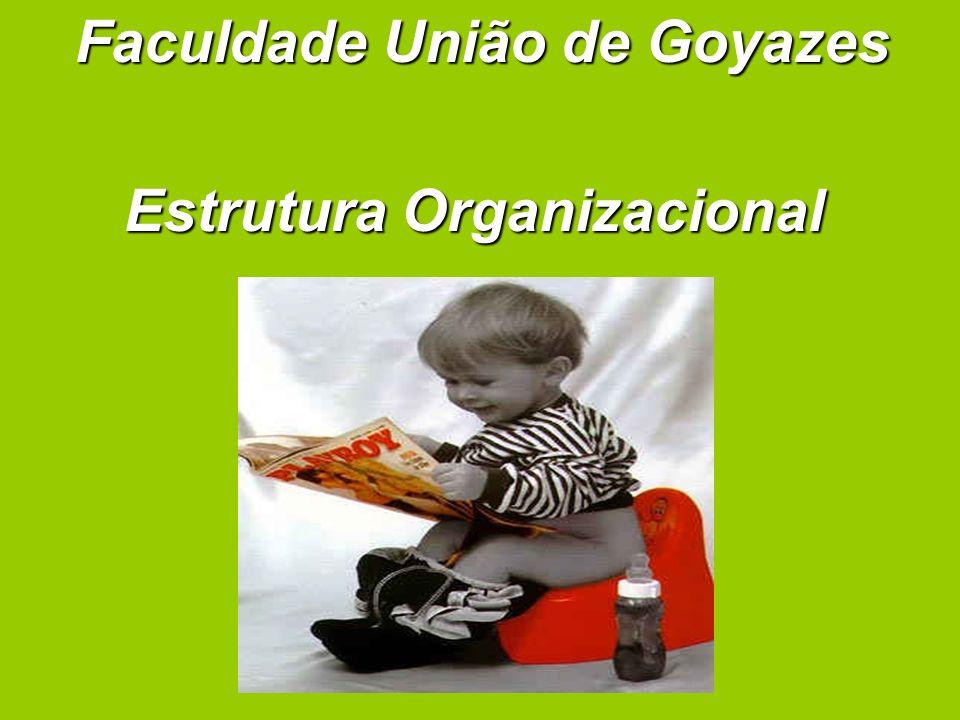 Organização territorial E usado o critério geográfico de departamentalização, cada unidade de trabalho que corresponde a um território.