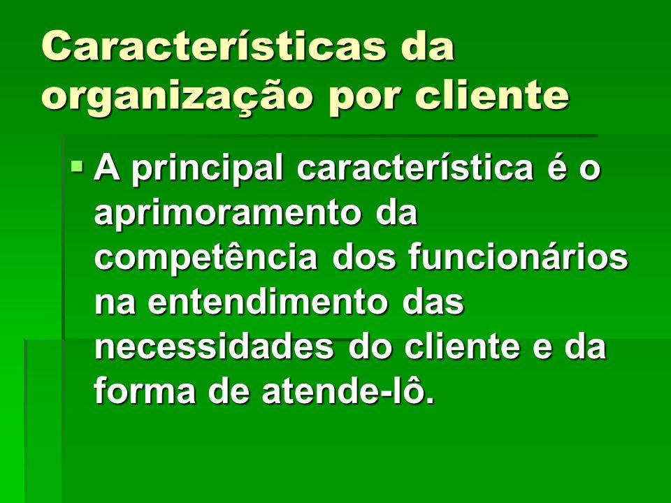 Características da organização por cliente A principal característica é o aprimoramento da competência dos funcionários na entendimento das necessidad