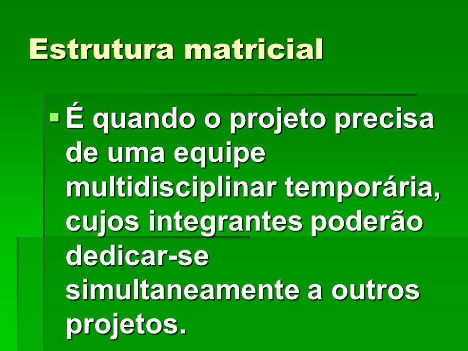 Estrutura matricial É quando o projeto precisa de uma equipe multidisciplinar temporária, cujos integrantes poderão dedicar-se simultaneamente a outro