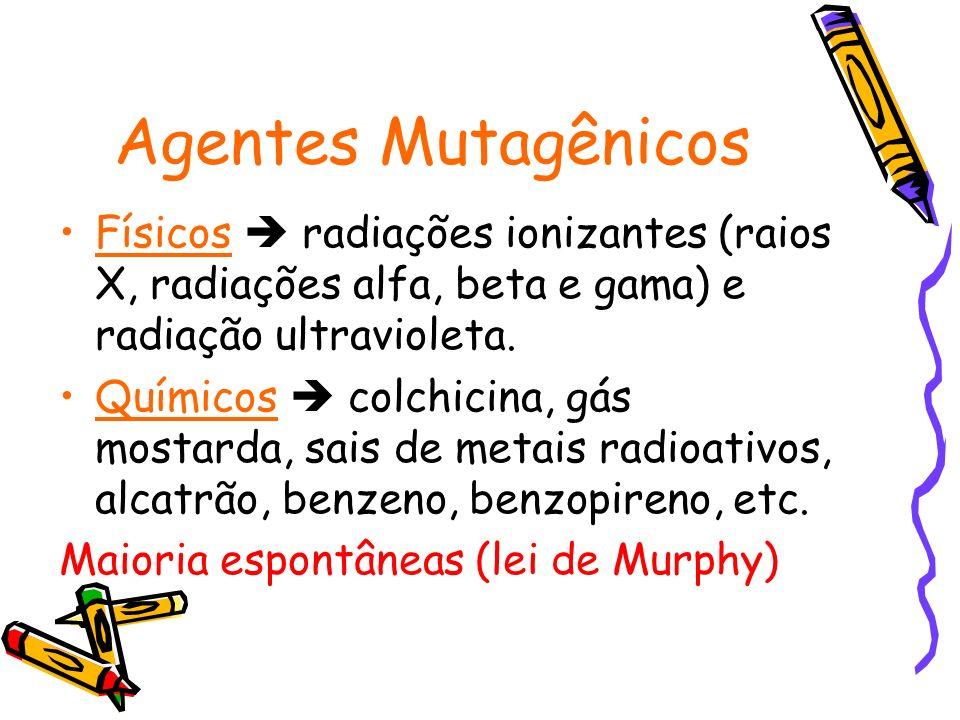 Agentes Mutagênicos Físicos radiações ionizantes (raios X, radiações alfa, beta e gama) e radiação ultravioleta. Químicos colchicina, gás mostarda, sa