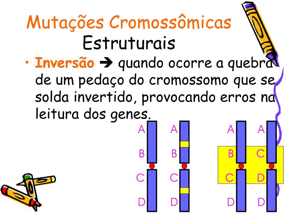 Mutações Cromossômicas Estruturais Inversão quando ocorre a quebra de um pedaço do cromossomo que se solda invertido, provocando erros na leitura dos