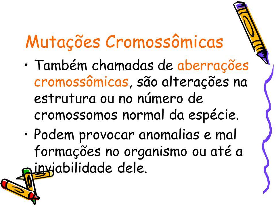 Mutações Cromossômicas Estruturais Deficiência ou deleção quando ocorre a perda de um pedaço do cromossomo, com conseqüente perda de genes.