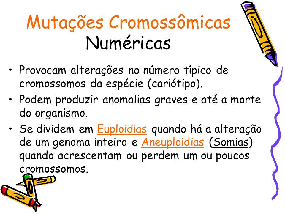 Mutações Cromossômicas Numéricas Provocam alterações no número típico de cromossomos da espécie (cariótipo). Podem produzir anomalias graves e até a m